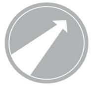 Zielstrebigkeit_nur_icon